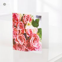 Pink Rose – Blank Greetings Card  Code: C06131ZF | National and Local Delivery