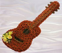 Orange Guitar Funeral Flower Tribute Code: JGF206FGO
