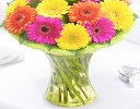 Germini Cheer Vase Code: JGFG00280GC  | Local Delivery Or Collect From Shop Only