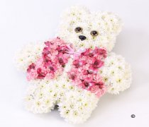 Pink Teddy Bear Code: F13751PS