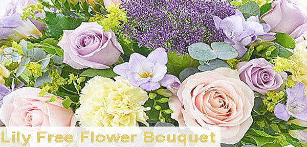 Lily Free Flower Bouquets Flowers | Sameday Flower Delivery